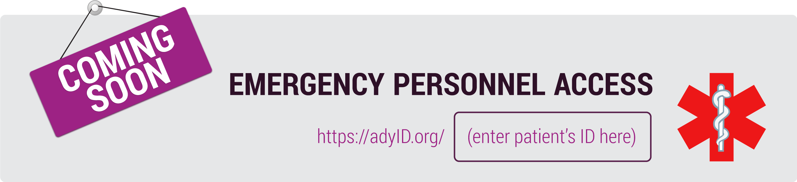 Emergency personnel access